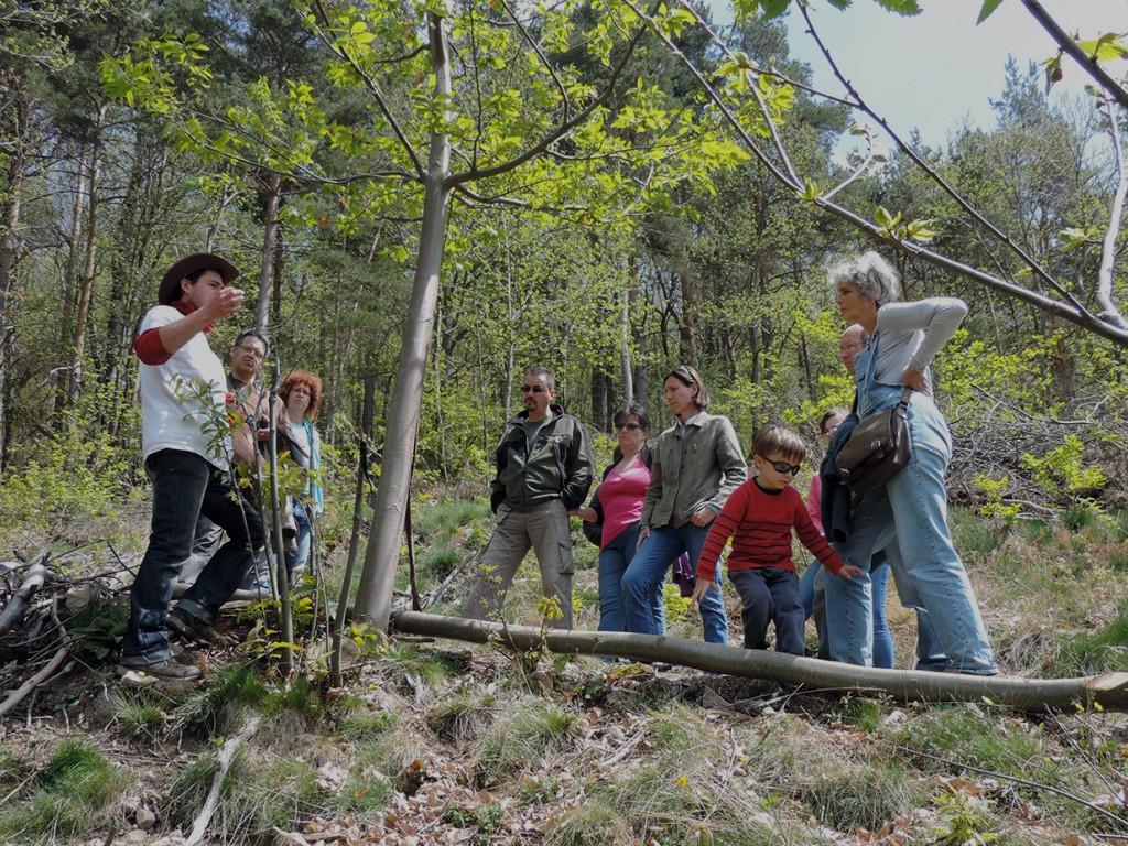 Présentation de la greffe d'arbres à La Ferme des Genêts pendant Ferme en Ferme