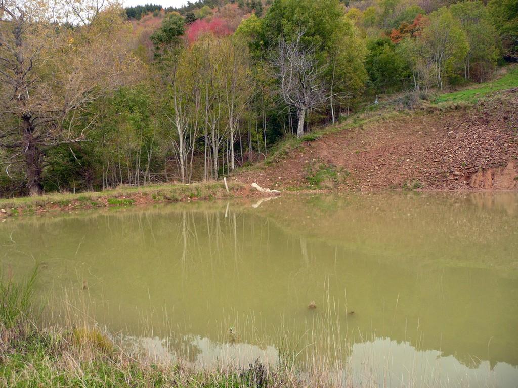 Le lac créé par Jonathan Villien à La Ferme des Genêts