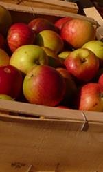 Plateau pomme